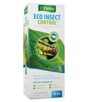 Eco Insect Control