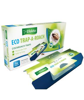 Eco Trap A Roach