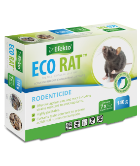 Pest Control: Mice Vs. Rats